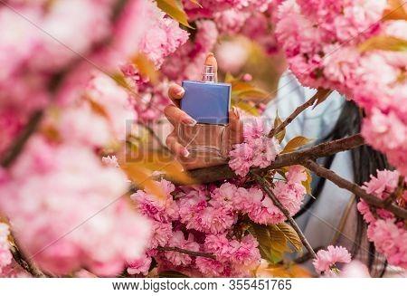 Eau De Toilette. Luxury Lotion. Top Perfume Brands. The Perfume Guide. Female Hold Bottle. Season Di