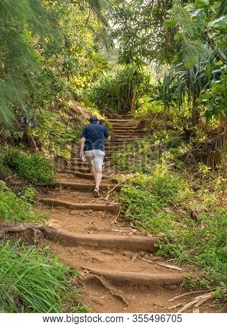 Senior Hiker Walsk Up The Steep Kalalau Trail From Kee Beach On North Coast Of Kauai