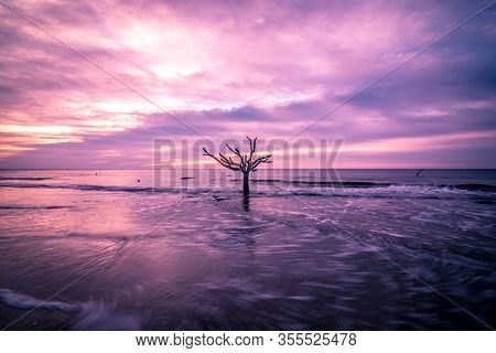 Beach Scenes Of Hunting Island In South Carolina