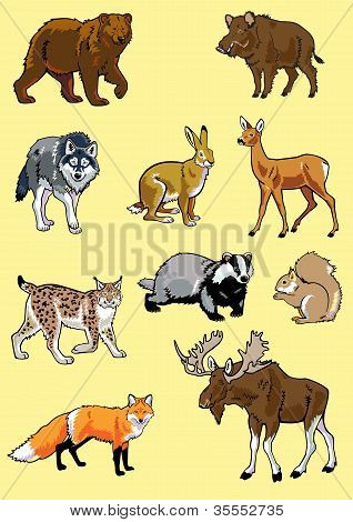 set of Europe wild animals isolated yellow background poster
