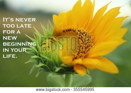 Inspirational Motivational Quote - It Is Never Too Late For A New Beginning In Your Life. With Fresh