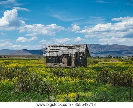 Run-down Building In A Beautiful Summer Landscape. Old Home Or Building In Disrepair.