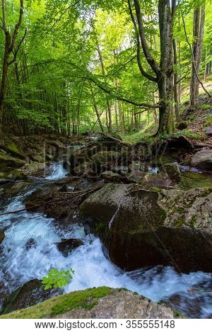Water Stream In The Beech Forest. Wonderful Nature Scenery In Spring, Trees In Fresh Green Foliage.