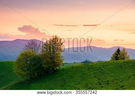 Rural Landscape In Mountains At Dusk. Amazing View Of Carpathian Countryside With Fields And Trees O