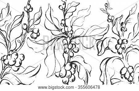 Coffee Sketch. Vector Nature Tree, Branch, Leaf, Bean, Grain. Vintage Hand Drawn Ink Illustration On