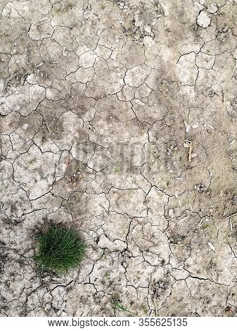 Green Grass On Dry Cracked Earth.land With Dry And Cracked Ground.