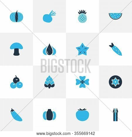 Food Icons Colored Set With Starfruit, Beet, Eggplant And Other Virgin Elements. Isolated Vector Ill