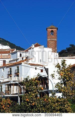View Of Whitewashed Village (pueblo Blanco), Salares, Costa Del Sol, Malaga Province, Andalucia, Spa