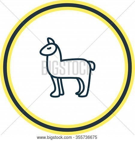 Vector Illustration Of Lama Icon Line. Beautiful Zoology Element Also Can Be Used As Alpaca Icon Ele