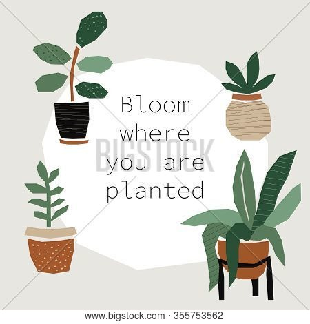 Every Day Motivation As Creative Trendy Abstract Paper Cut Out Collage Background With Plants In Pot