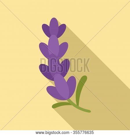 Aromatherapy Lavender Icon. Flat Illustration Of Aromatherapy Lavender Vector Icon For Web Design