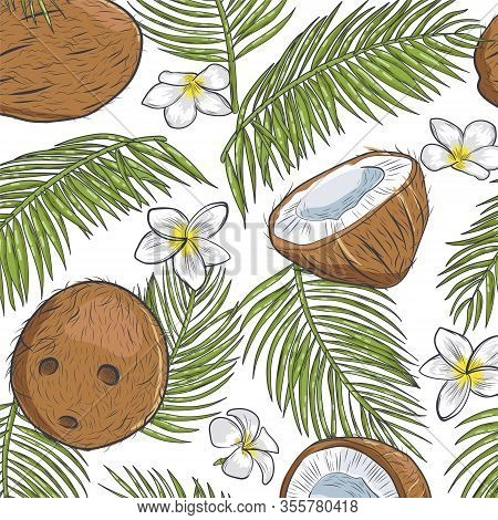Coconut Seamless Pattern. Tropical Organic Coconut Seamless Background.