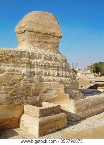 Ancient Great Sphinx Of Giza. Right Side Rear View Point.