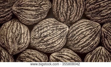 abstract background of organic black walnuts in shells, black and white platinum toned image