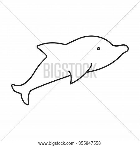 Whale Orca Vector Icon.outline Vector Icon Isolated On White Background Whale Orca.