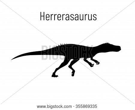 Herrerasaurus. Theropoda Dinosaur. Monochrome Vector Illustration Of Silhouette Of Prehistoric Creat