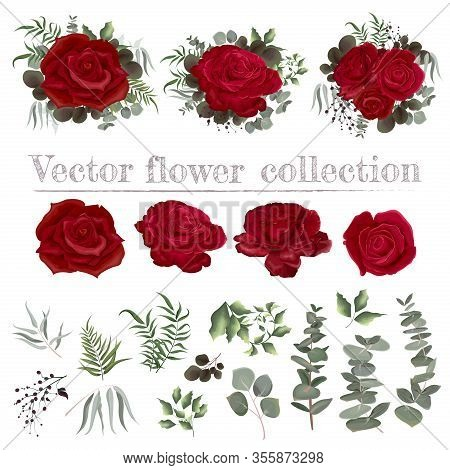 Vector Set Of Roses And Plants. Compositions Of Flowers. Plants Isolated On A White Background. Red