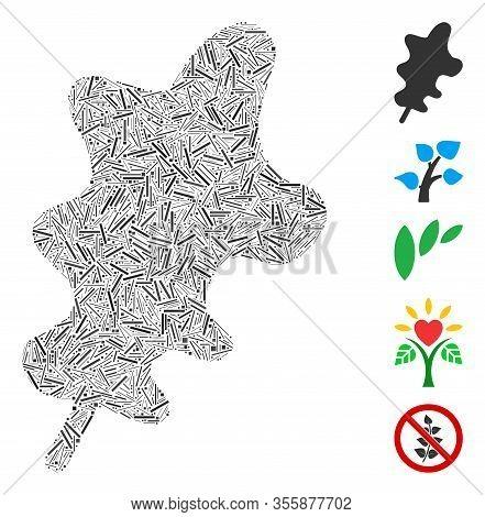 Hatch Mosaic Based On Oak Leaf Icon. Mosaic Vector Oak Leaf Is Composed With Randomized Hatch Items.