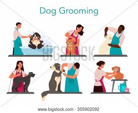 Collection Of Professional Barber Grooming Dog. Woman And Man