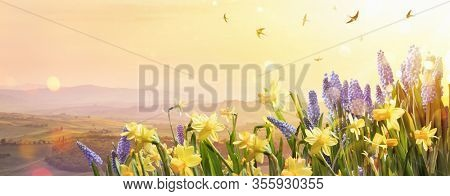 Spring Flowers in the Sunlight. Easter Holiday Background