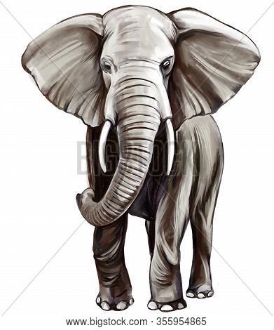 Animal Elephant, Art Illustration Painted With Watercolors Isolated On White Background