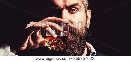 Bearded Drink Cognac. Sommelier Tastes Drink. Man Holding A Glass Of Whisky. Sipping Whiskey. Portra