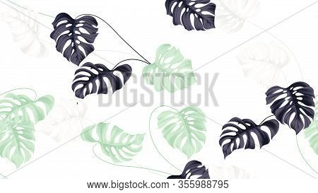 Floral Seamless Pattern, Green, Black And White Split-leaf Philodendron Plant On White Background, P