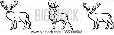 Deer Icon Isolated On Background Walking, White, Wild, Wilderness, Wildlife, Zoo