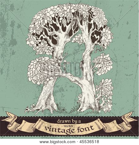 Magic grunge forest hand drawn by a vintage font - A