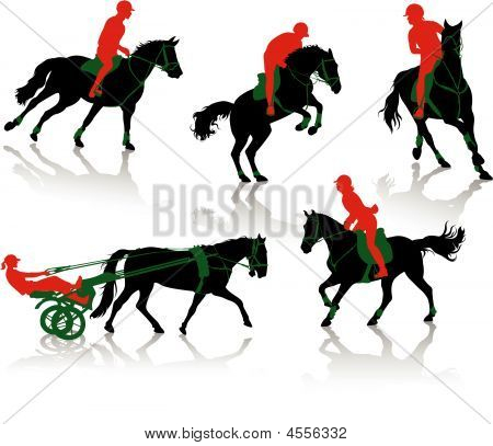 Horses Competition