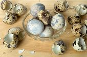 Background of quail eggs in a plate and shell. poster