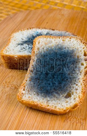 Moldy Bread On A Chopping Board