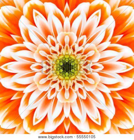 konzentrische Blume Orange Center. Mandala kaleidoskopische Gestaltung