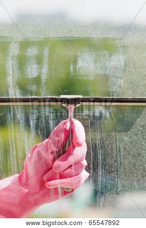 Hand In Pink Glove Cleans Window Pane By Squeegee