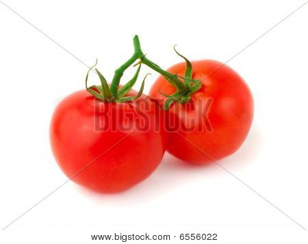 Two Fresh Tomatoes
