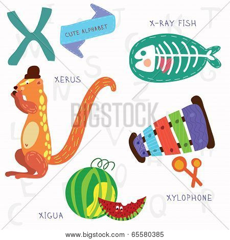 Very Cute Alphabet.x Letter. Xerus,x-ray Fish,xylophone,xigua