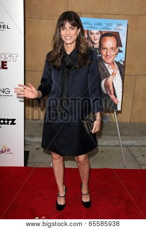 LOS ANGELES - MAY 22:  Amanda Peet at the
