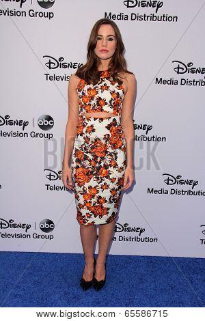 LOS ANGELES - MAY 19:  Christa B Allen at the Disney Media Networks International Upfronts at Walt Disney Studios on May 19, 2013 in Burbank, CA