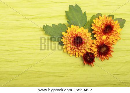 Flowers On Cloth
