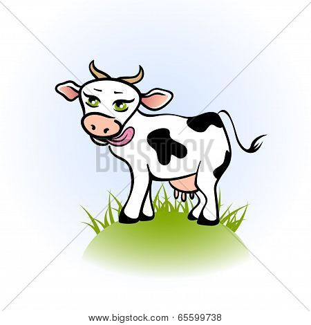 Licking cow on a green field. Vector illustration poster