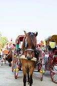 the Carriages and horses in Lampang Thailand poster