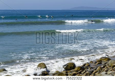 Lucky Surfer Waves