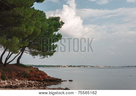 Vir coast