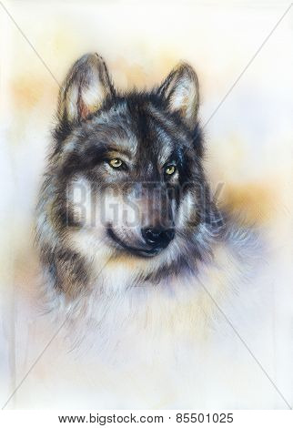 Wolf Painting On Canvas , Color  Background On Paper , Multicolor Illustration