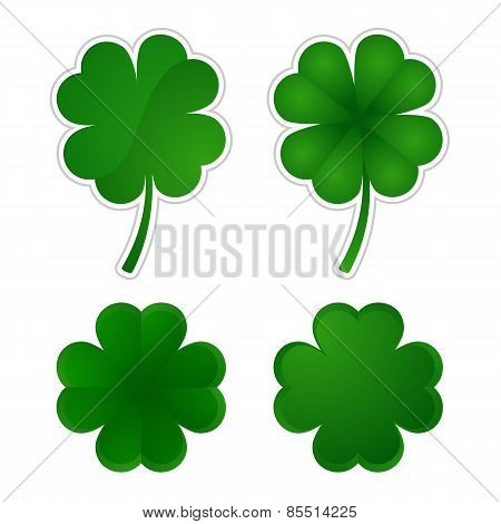 Collection of four-leaf clovers