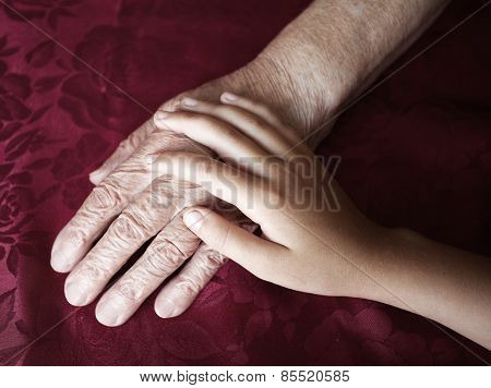 Two hands. Old and young. Child's hand on arm of an mature woman