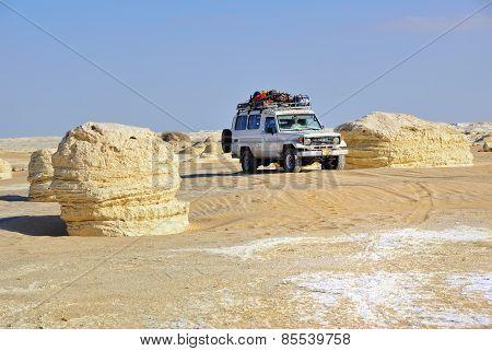 Safari In The Desert
