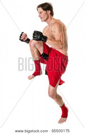 Young adult martial artist. Studio shot over white.