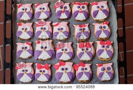 Color owl bakery