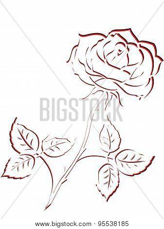 Black And Red Outline Of Rose Flower
